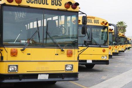 Photo pour Autocars scolaires jaunes garés dans le stationnement - image libre de droit