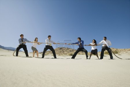 Business Playing Tug Of War In The Desert