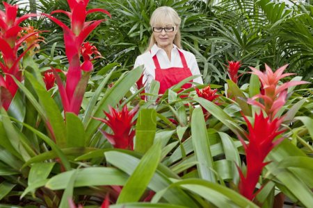 Photo for Front view of a senior woman working in botanical garden - Royalty Free Image