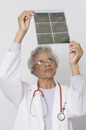 Senior female doctor examining x-ray