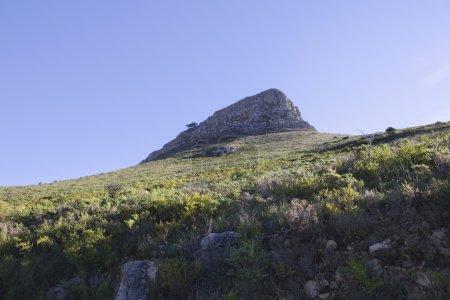 Photo pour Vue en angle bas de la montagne Lions Head au Cap - image libre de droit