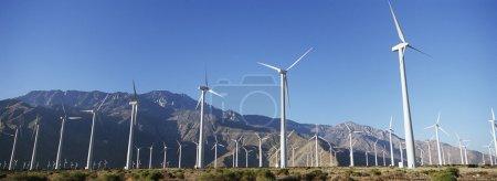 Wind Turbines In Desert