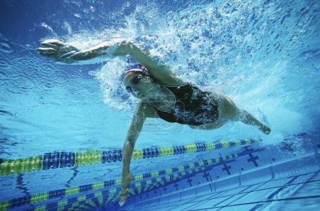Female Swimmer Swimming In Pool
