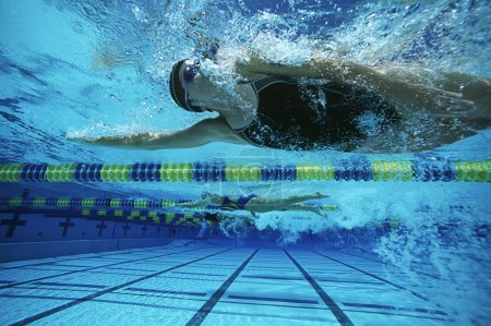 Female Swimmers Swimming