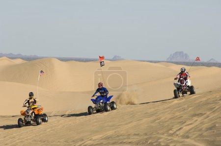 Men riding quad bikes