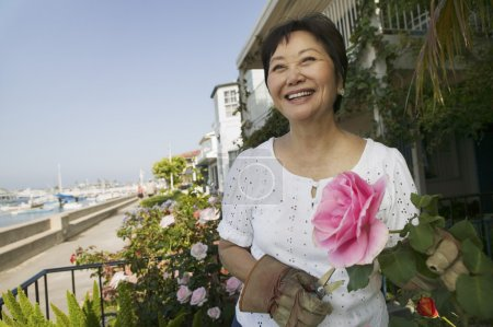 Photo for Woman pruning roses outdoors - Royalty Free Image