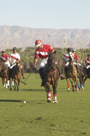 Players playing polo