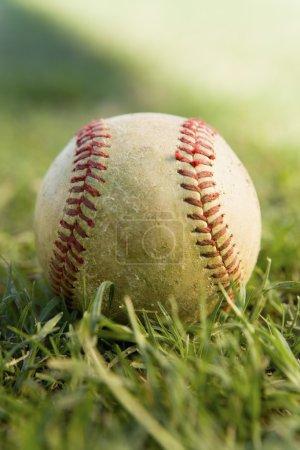 baseball game ball on grass