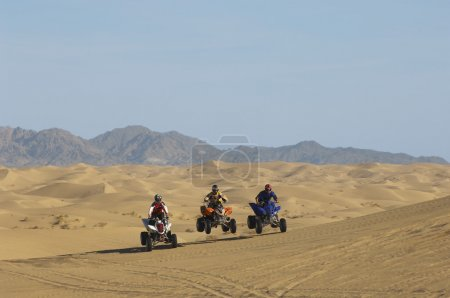 Men riding quad bikes