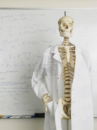 Skeleton in lab coat