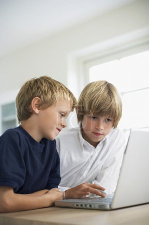 brothers using laptop