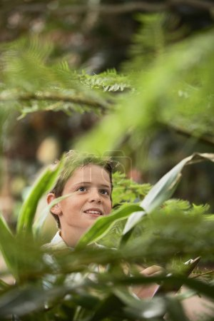 Boy travelling in Forest