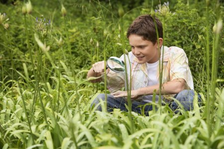 Boy Looking at Insects