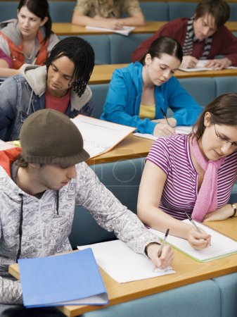 Multiethnic students in lecture room...