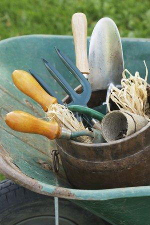 Wheelbarrow with Gardening Tools