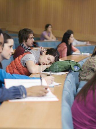 sleeping Teenage Student