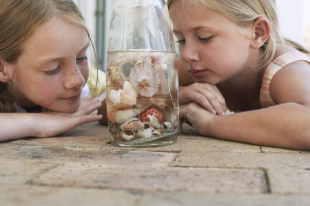 girls looking at shells in jar