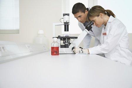 Technicians Using Microscope