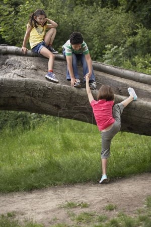 Children on Tree Trunk