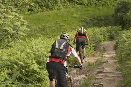 Photo pour Deux cyclistes en piste à la campagne - image libre de droit