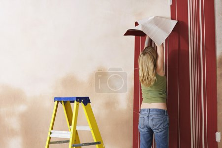 Young Woman Wallpapering