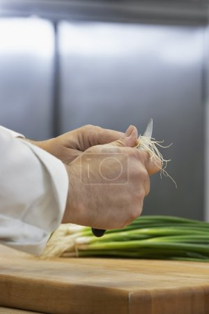 Photo for Chef chopping onion, close-up - Royalty Free Image