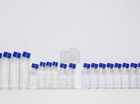 Specimen bottles on shelf