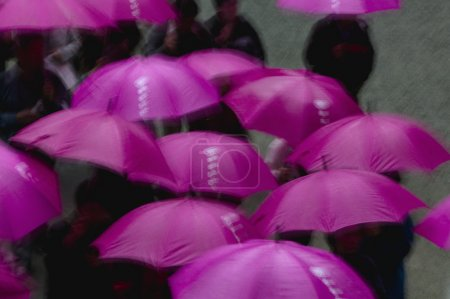 People under purple umbrellas