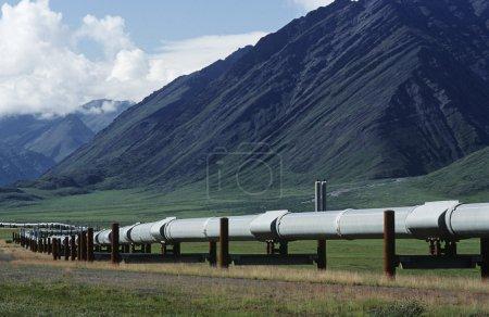 Photo pour USA, Alaska, Dalton Highway pipeline dans la vallée - image libre de droit