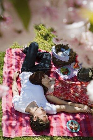 Photo pour Jeune Couple ayant pique-nique, vue de dessus - image libre de droit
