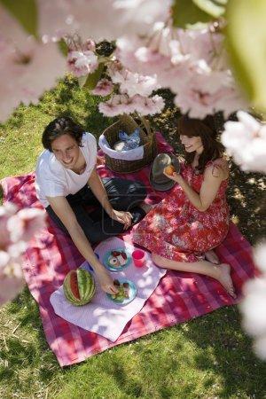 Photo pour Jeune couple ayant un pique-nique - image libre de droit