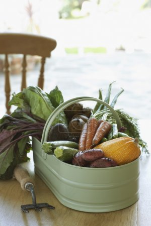 Fresh homegrown vegetables