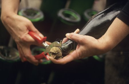 process of Disgorging Champagne