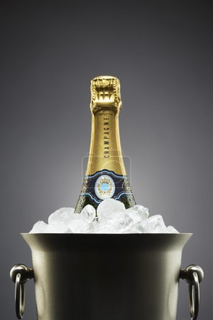 Photo for Champagne bottle in ice bucket - Royalty Free Image