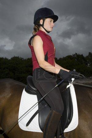 Horseback rider sitting on brown horse