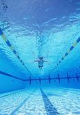 Male swimmer in pool