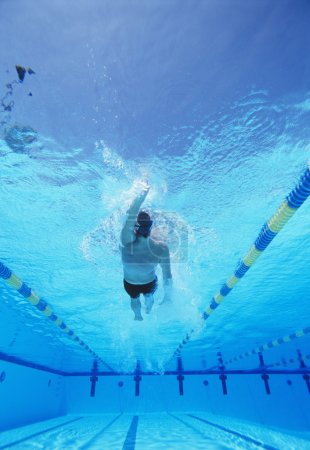 Photo for Underwater shot of young male swimmer doing backstroke in swimming pool - Royalty Free Image