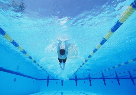 Photo for Underwater shot of young male athlete swimmer in pool - Royalty Free Image