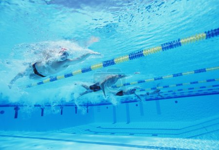 Photo for Underwater shot of four male athletes competing in swimming pool - Royalty Free Image