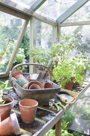 Gardening equipment on workbench