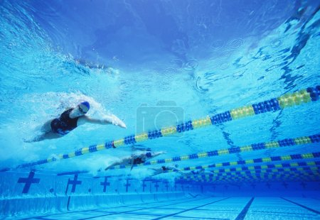 Photo for Four female professional participants racing in pool - Royalty Free Image