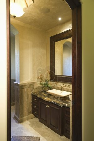 Dark wood bathroom