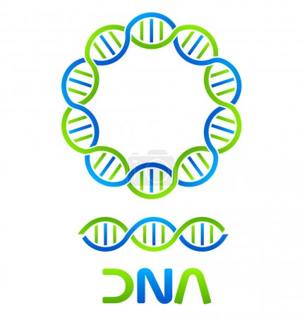 Illustration for DNA Strand in circle and seamless string to form pattern - Royalty Free Image