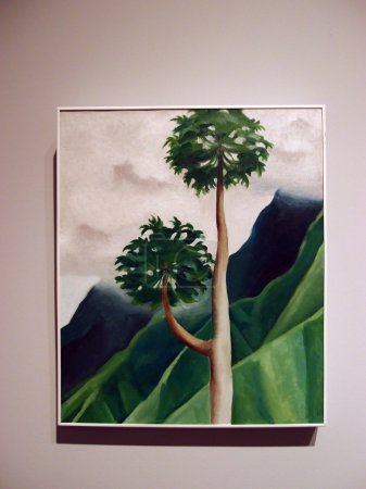 World Famous artist, Georgia O'keeffe, Papaw Tree, 'Iao Valley,
