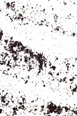 dirty earth on white background natural