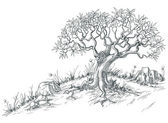 Olive tree graphic