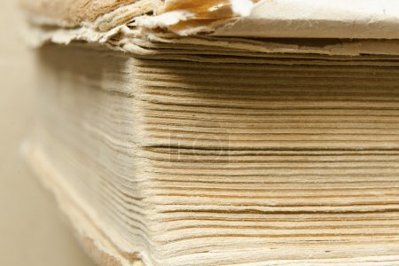 Photo for Abstract macro of ragged vintage book with focus on pages corner - Royalty Free Image