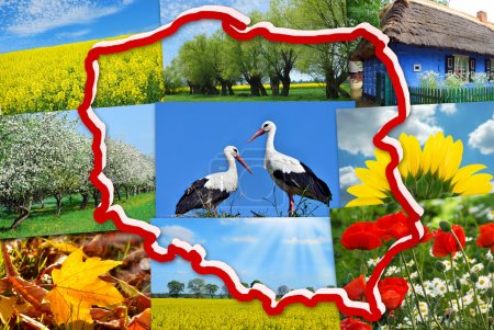 Photo pour White and red contour of Poland on background with collage of polish typical landscapes and nature symbols - image libre de droit