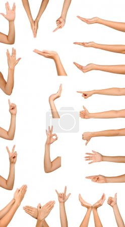 Photo for Collection of high resolution female hand gestures isoalted on white - Royalty Free Image