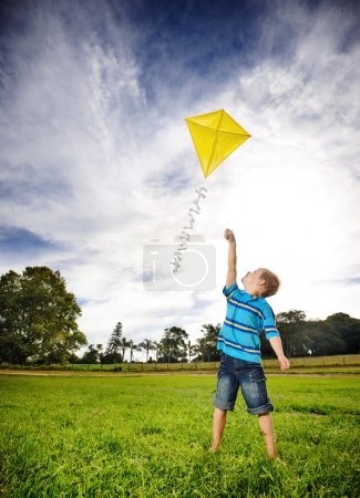 Ambitious boy flying kite